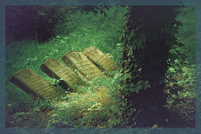 stary-cmentarz-zydowski