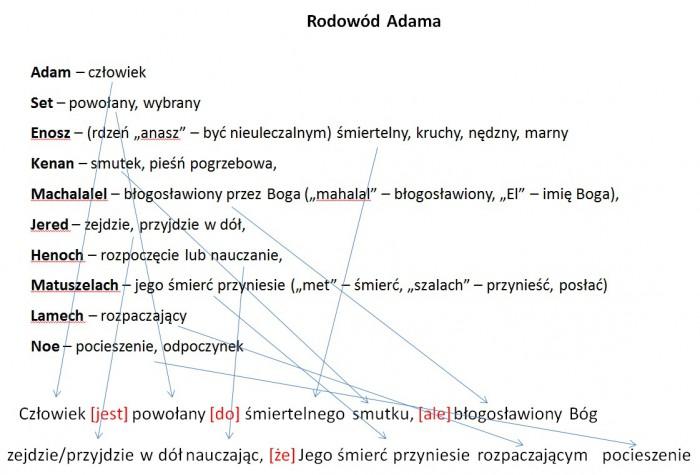 rodowod_Adama